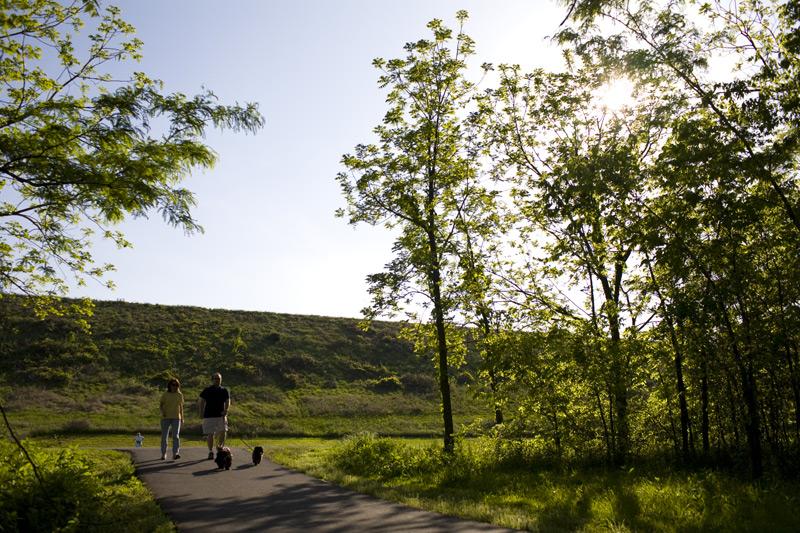 Loch Lomond Walking Trail
